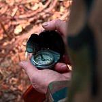 Kompass Wald